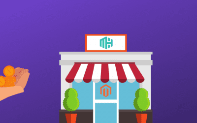 Choosing the Best Magento Host: The Ultimate Guide [2019]