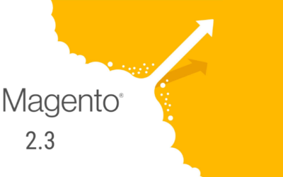 Magento 2.3 Release: What Could Go Wrong?